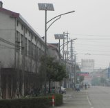 30W Solar Lighting Solar Street Light