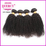 Cambodian Virgin Hair 8A Grade Weave Beauty Kinky Curly Hair Weft for Black Woman