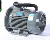11kw de asynchrone AC van de Fase van Motoren 15kw H160 3 Lichtgewicht ElektroMotor van de Inductie voor Compressoren