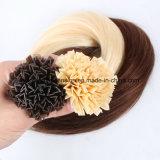 Estensione brasiliana dei capelli di punta dei capelli umani V