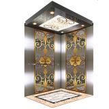 800kg, 1.0m/S Passenger Elevator voor 10 Persons