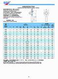 Extremidades de Rod Maintenance-Free (PEIXE-AGULHA… UK-2RS/SA… ET-2RS)