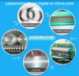 L'alta qualità della fabbrica del Hebei ha galvanizzato la rete metallica saldata /Plastic di /Welded della rete metallica
