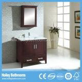 金属のフィートおよび反対の洗面器(BV176W)との米国式の浴室の虚栄心