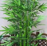Migliore Selling Artificial Plants di Bamboo Gu-SL5092956