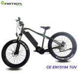 熱い販売Eは1000W電気自転車のバイクを自転車に乗る