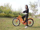 Motocicleta eléctrica 2017 de la conversión gorda del neumático con la bicicleta accionada por batería del pedal para la venta