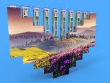 단계 동적인 장면 디자인을%s 드는 발광 다이오드 표시 (YZ-P1000)