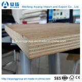Bintangor/Okume/madera contrachapada rentables del pino/del abedul/del álamo para los muebles