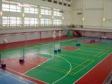 Il campo da pallacanestro, unità di elaborazione del silicone mette in mostra la corte