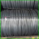 5.5 온화한 (MS) 철강선 로드
