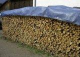 Encerado plástico de Polyethylenen da madeira serrada ao ar livre