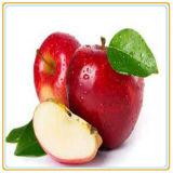 Горячим законсервированный сбыванием babyfood яблок