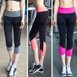 女性のヨガのズボン、スポーツの摩耗、体操のレギング