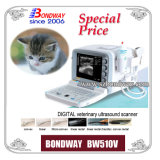 Portable Digital Vet Veterinary Ultrasound Scanner Ultrason Échographie