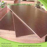 El dedo del precio bajo articuló la madera contrachapada marina de la base de Linyi