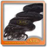 Zuverlässiges Supplier Best Quality brasilianisches Klipp in Hair