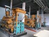 Lebendmasse des China-Fabrik-Preis-300-400kw/Syngas Vergaser-Kraftwerk mit CHP-Systems-der geschlossenen Wasserkühlung-Wärme-Wiederverwertung