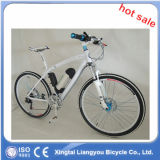 Mountain moderno Electric Bike para Sale/Electric Bicycle Battery