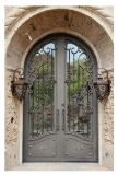 Porta do ferro feito da venda por atacado da fábrica de China para a casa de campo