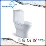 En deux pièces conjuguent la toilette affleurante de lavage à grande eau (ACT5246)