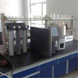 Labor entionisiertes Geräten-reines/ultra reines Wasser-Gerät Y22 des Wasser-10L/H