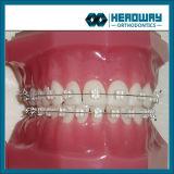 Corchete dental de la alta calidad, corchete de cerámica del zafiro con el Ce FDA