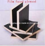 La película concreta de Formwrok del grado del AAA hizo frente a la madera contrachapada