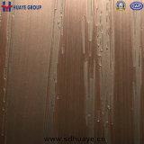 Couleur décorative gravée en relief par feuille d'acier inoxydable de Huaye pour le décor à la maison