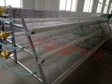 Führender Systems-Huhn-legender Selbstrahmen/voll automatisierte Geflügel-Batterien