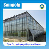 Grandes serres chaudes en verre végétales agricoles
