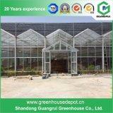 One-stop Glas Commerical Greenhouse für Verkauf