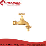 Alta qualidade que range a torneira fixada na parede (ZS0403)