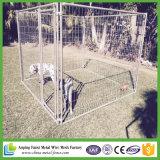 Alta calidad y fácil durable de mover perreras del perro