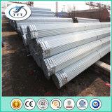Горячая окунутая гальванизированная пробка лесов стальная от трубы Китая Tianjin Tianyingtai стальной