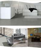 Heiße neue Fabrikmatt-fertige rustikale Fußboden-Fliese des Verkaufs-2016