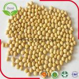 Proteinreiche Soyabohnen für Sojabohnenöl-Milch