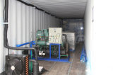 販売のための機械プラントを作るコンテナに詰められたアイスキャンディー3トンの