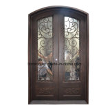 Impressionnant façade artisanale portes fenêtres en fer forgé