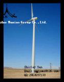 Portello di pezzo fucinato della torretta di energia eolica per la torretta del vento