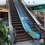 die 1000mm Rolltreppe mit Edelstahl tritt (CER)