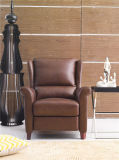 Chaise moderne de loisirs de meubles de salle de séjour (791)