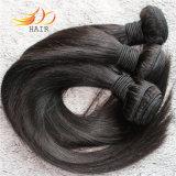 tessuto malese non trattato dei capelli diritti dei capelli umani del Virgin 8A