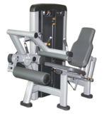 Gym for 강한 자리가 주어진 다리 컬 기계 (XH908)