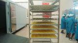 Eficiência elevada 800kg por o secador da fruta da bomba de calor do grupo para a venda