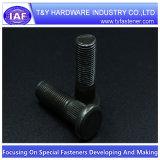 China-Hersteller-Qualitätsspur-Rad-Schraube
