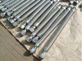 Fabrik-gewölbter Edelstahl-flexibler Gas-Schlauch