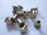 L'acciaio rivetta semi tubolare
