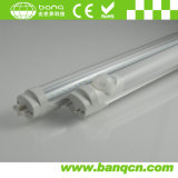 TUV Approved 2000lm 120cm 20W T8 LED Tube Light