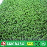 Allmay Natural Artificial Grass pour Door Mat